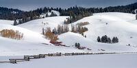 Winter Hills print