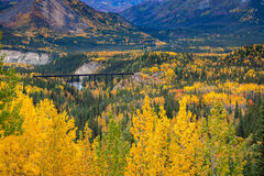Alaska, Denali, Fall, Color, Mountain