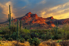 Arizona, Gold, Canyon, Sunset, Desert, Mountains