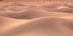 California, Death Valley, Sand, Dunes, Mesquite