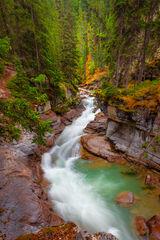 Canada, Malinge, Canyon, Jasper,