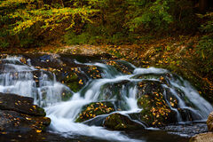 Tennessee, Smoky Mountains, Stream, Fall Waterfall