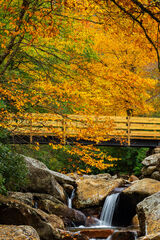 Tennessee, Smoky Mountains, Fall, Color, Bridge, River