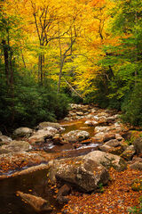 Tennessee, Smoky Mountains, Fall, Color, River