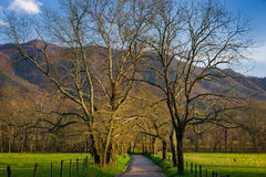 Tennessee, Smoky Mountains, Cades Cove, Sparks Lane