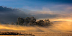 Tennessee, Smoky Mountains, Cades Cove, Fog