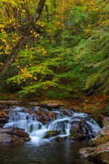 Tennessee, Smoky Mountains, Little River, Fall, Cascade