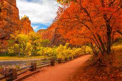 Utah, Zion Park, The Narrows, River, Trail, Mountain