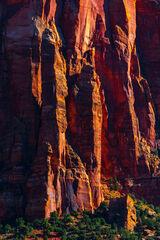 Utah, Zion, National Park, Canyon, Shadows,  Red Rock