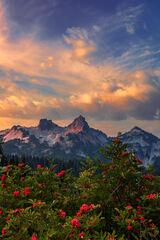 Washington, Mount Rainier, Tatoosh Range