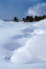 Wyoming, Yellowstone, Winter, Hayden Valley