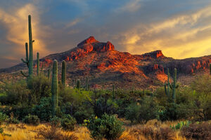 Arizona, Gold, Canyon, Sunset, Desert, Mountains