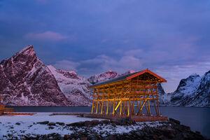 Norway, Renie