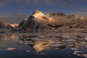 Norway, Lofoten, Islands, winter, water, freeze, reflection