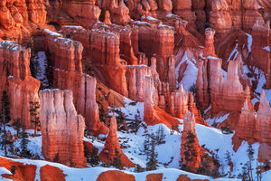 Utah, Bryce, Canyon, Hoodoo, Winter, Glow