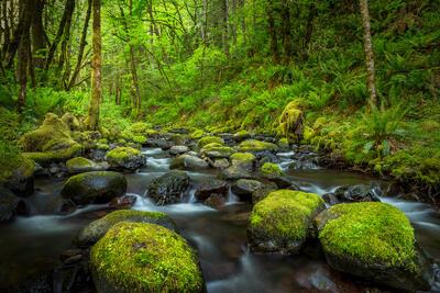 Oregon, River, Gorton, Creek, Columbia River Gorge, limited edition, photograph, fine art, landscape