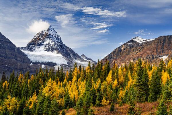Fall At Assiniboine