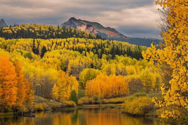 Colorado, Telluride, Cushman Lake, Fall, Color, Aspen, Tree, , limited edition, photograph, southwest colorado, fine art, landscape, fall color