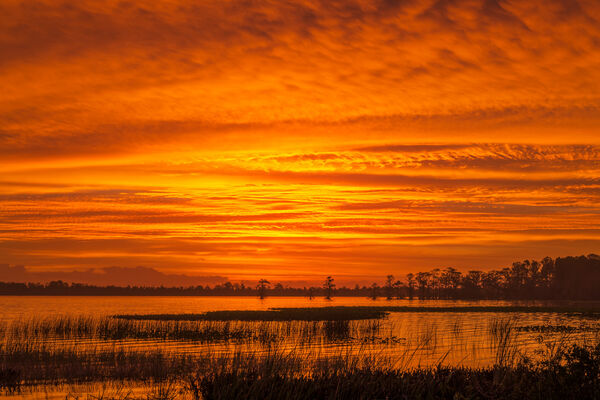 Florida, Lake, Sunrise, Istokpoga, limited edition, photograph, fine art, landscape
