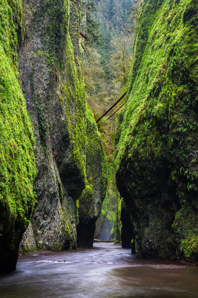 Oregon, Oneonta, Gorge, Columbia, River, limited edition, photograph, fine art, landscape