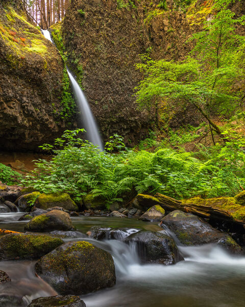 Oregon, Columbia River Gorge, Ponytail Falls, Creek, Waterfall