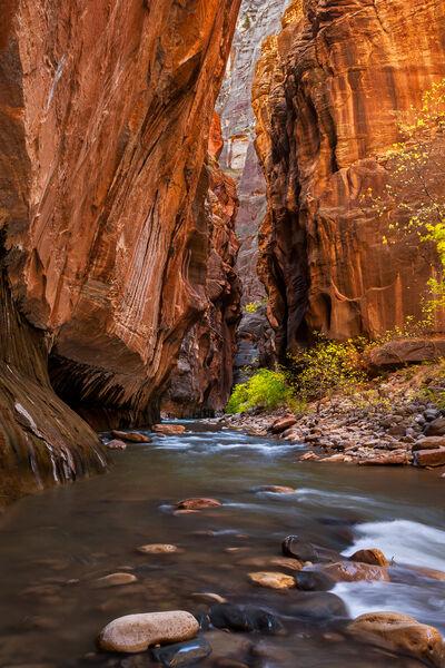 Utah, Zion Park, Virgin River, The Narrows, Canyon, River
