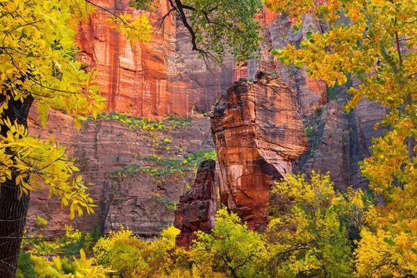 Utah, Zion Park, Pulpit, Temple of Sinawava, Virgin River, Fall color