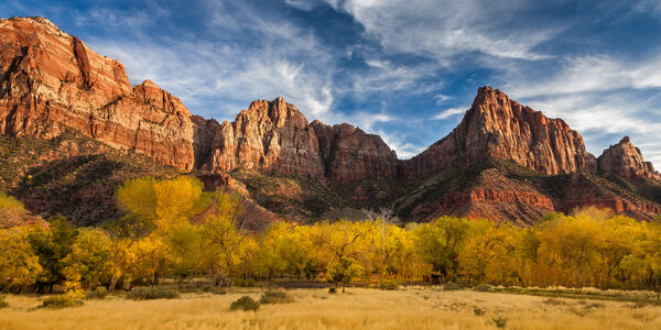 Utah, Zion Park, The Watchman, Fall Color