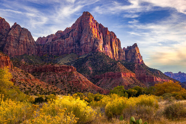 Utah, Zion Park, The Watchman, River, Mountain, Fall Color