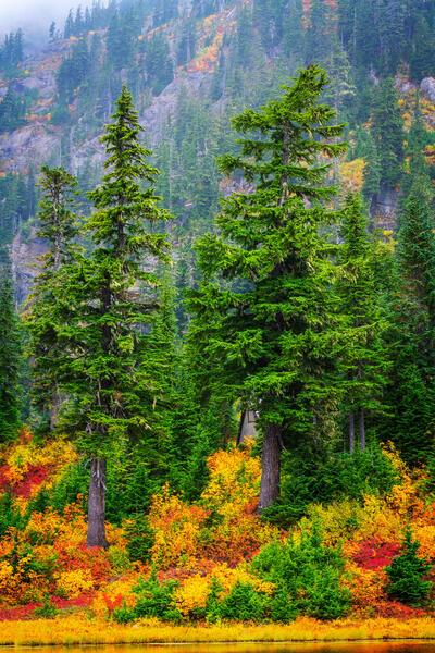 Cascades Fall