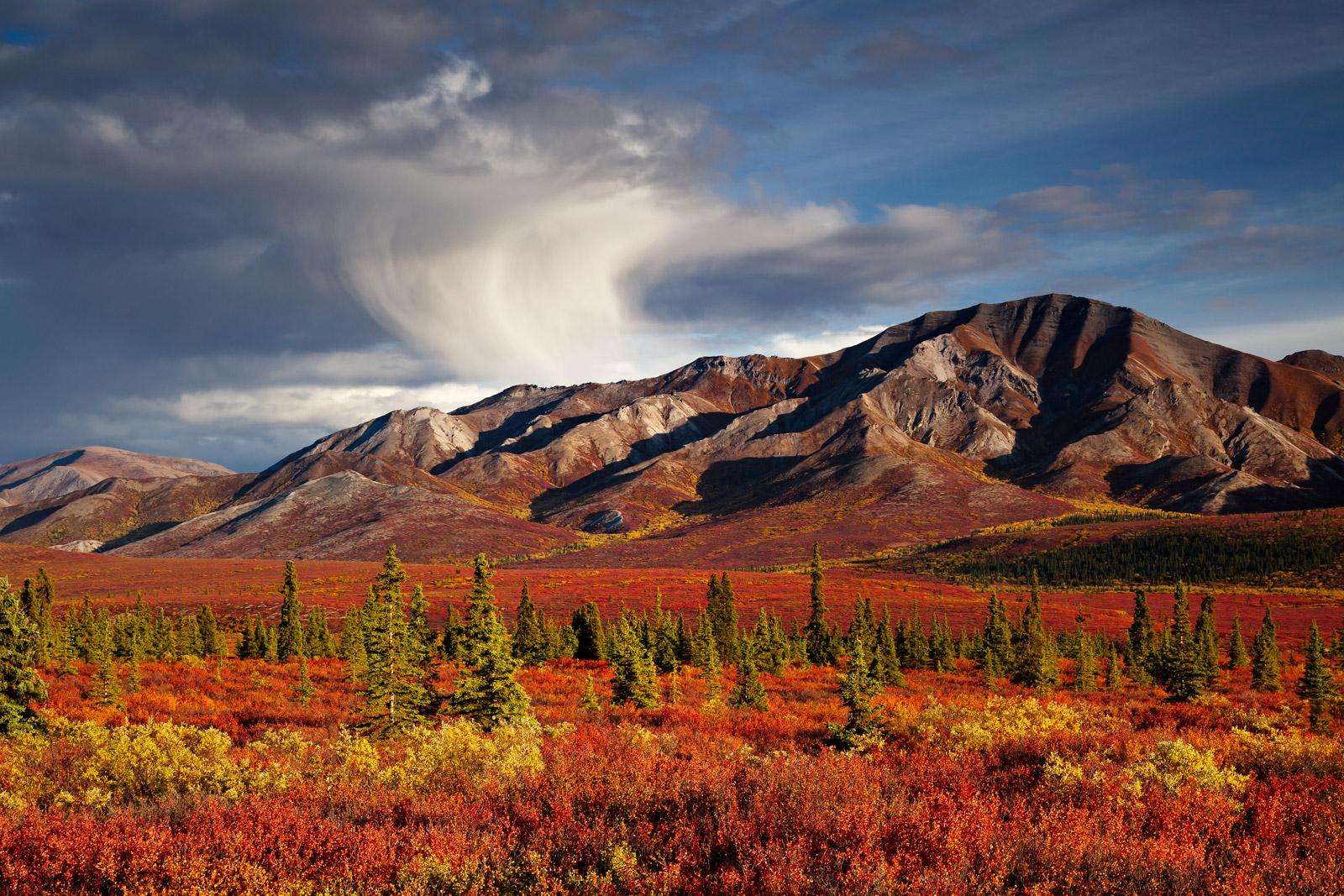 Alaska, Denali, Fall, Color, Mountain, photo