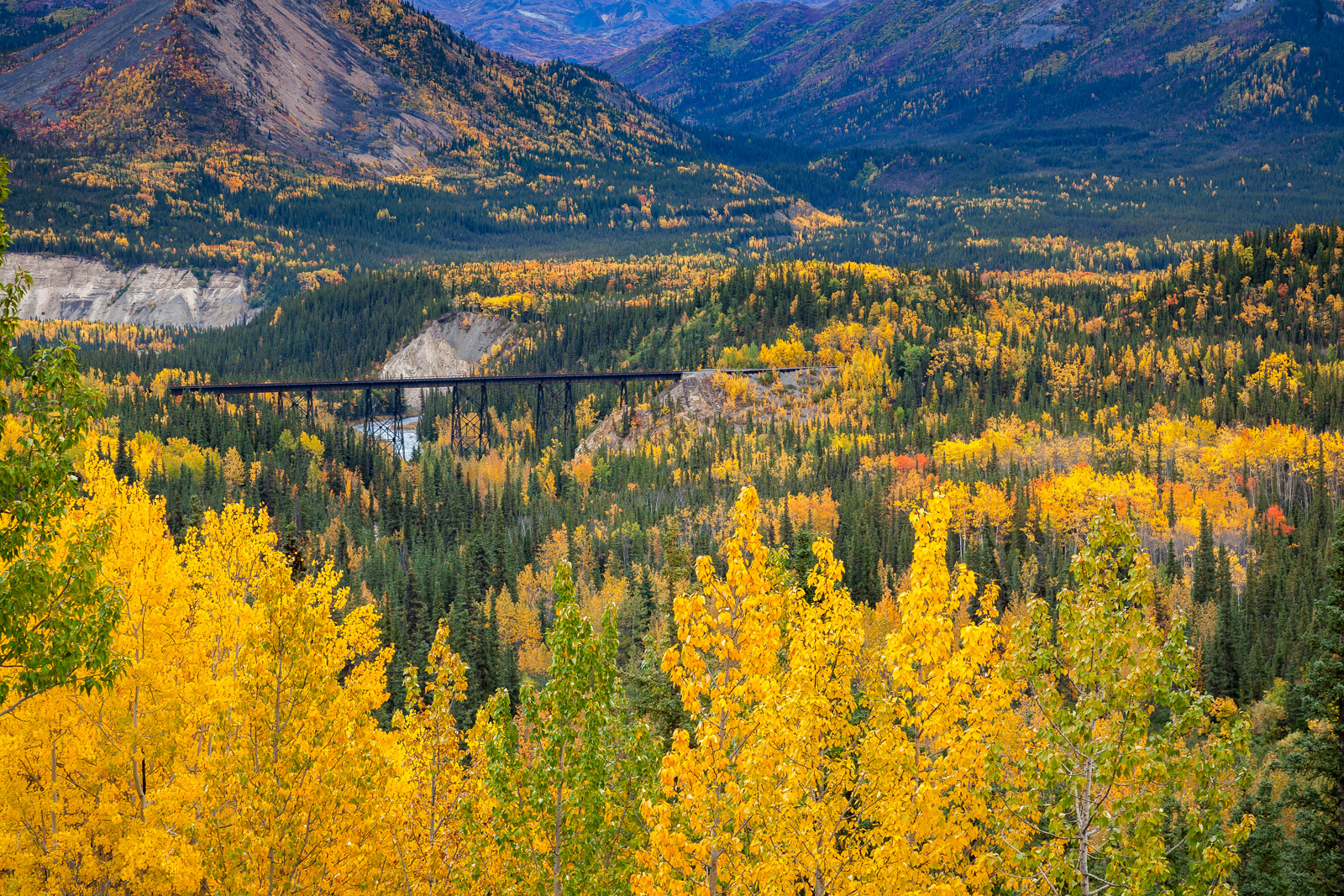 A Limited Edition, Fine Art photograph of Alaska Fall color with a valley filled with fall trees with a train trestle running...