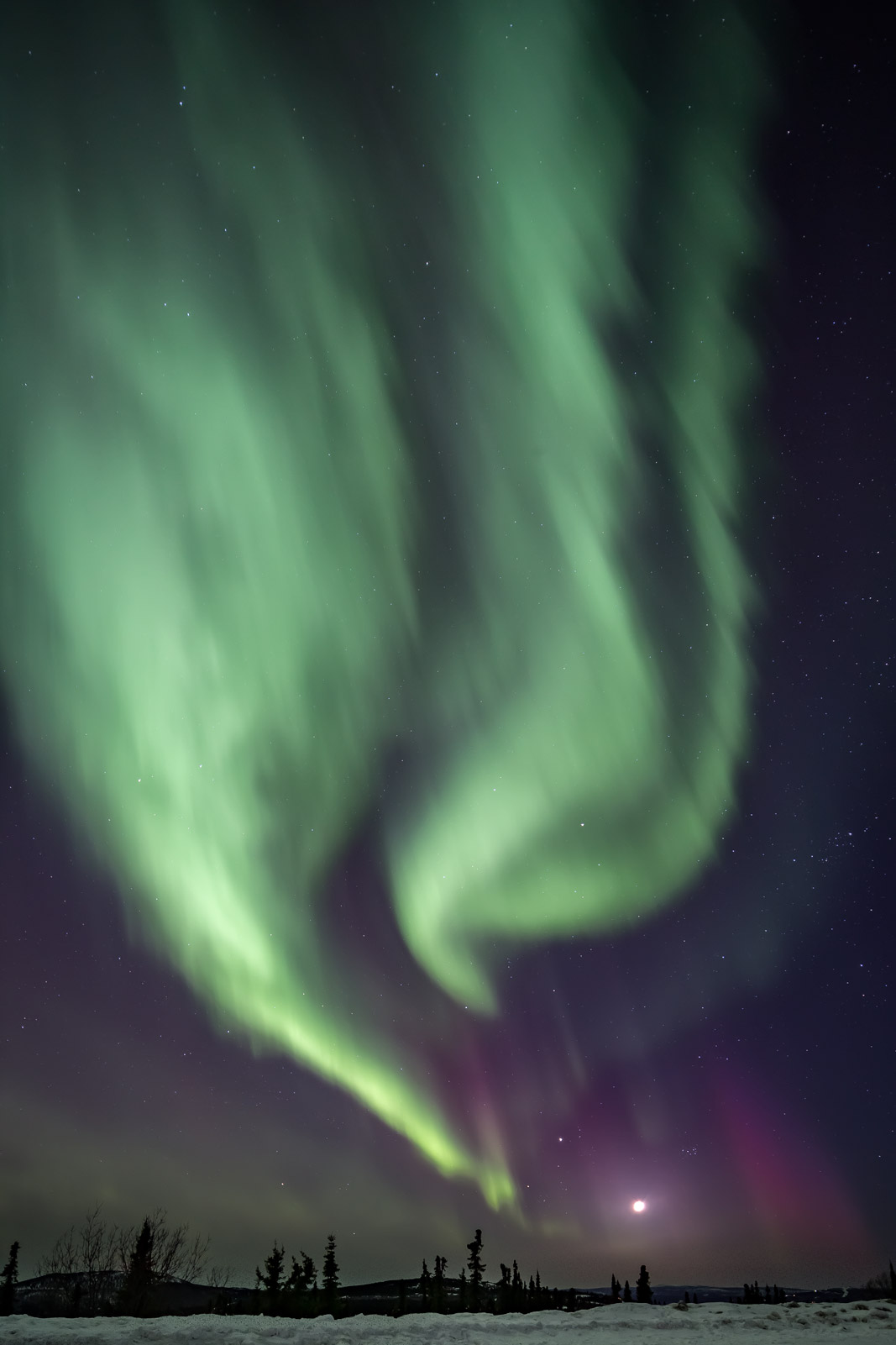 Alaska, Northern Lights, aurora, limited edition, photograph, fine art, landscape, photo