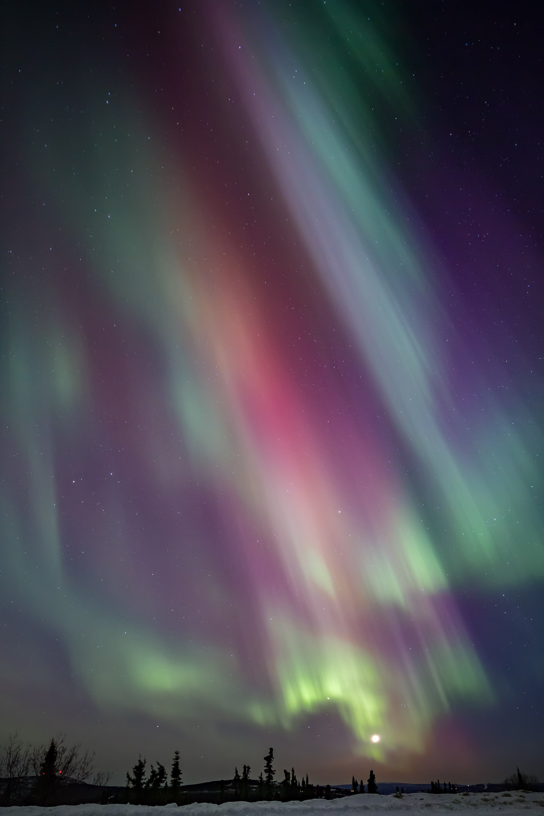 A Limited Edition, Fine Art photograph of a multi-colored aurora with green, red and purple colors above the full moon in Fairbanks...