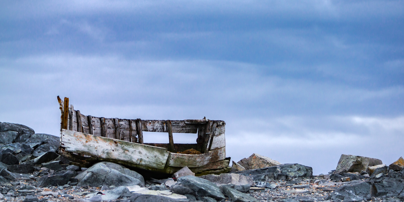 A Limited Edition, Fine Art photograph in Antarctica of the remains of an old wooden whaling boat that has been on the rocks...