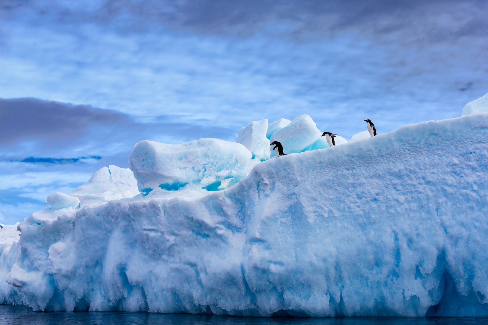 A Limited Edition, Fine Art photograph of three penguins making their way down a huge iceberg set against blue skies in Hope...