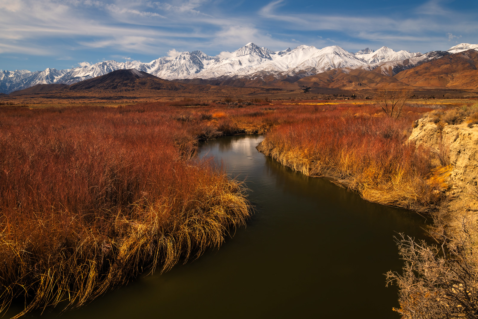 California, Eastern Sierra, Owens River