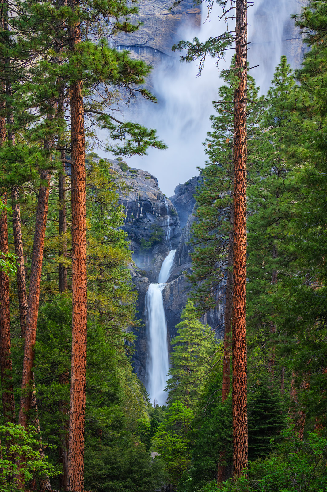 A Limited Edition, Fine Art photograph looking at Yosemite Falls through two tall Ponderosa Pine Trees at Yosemite National Park...