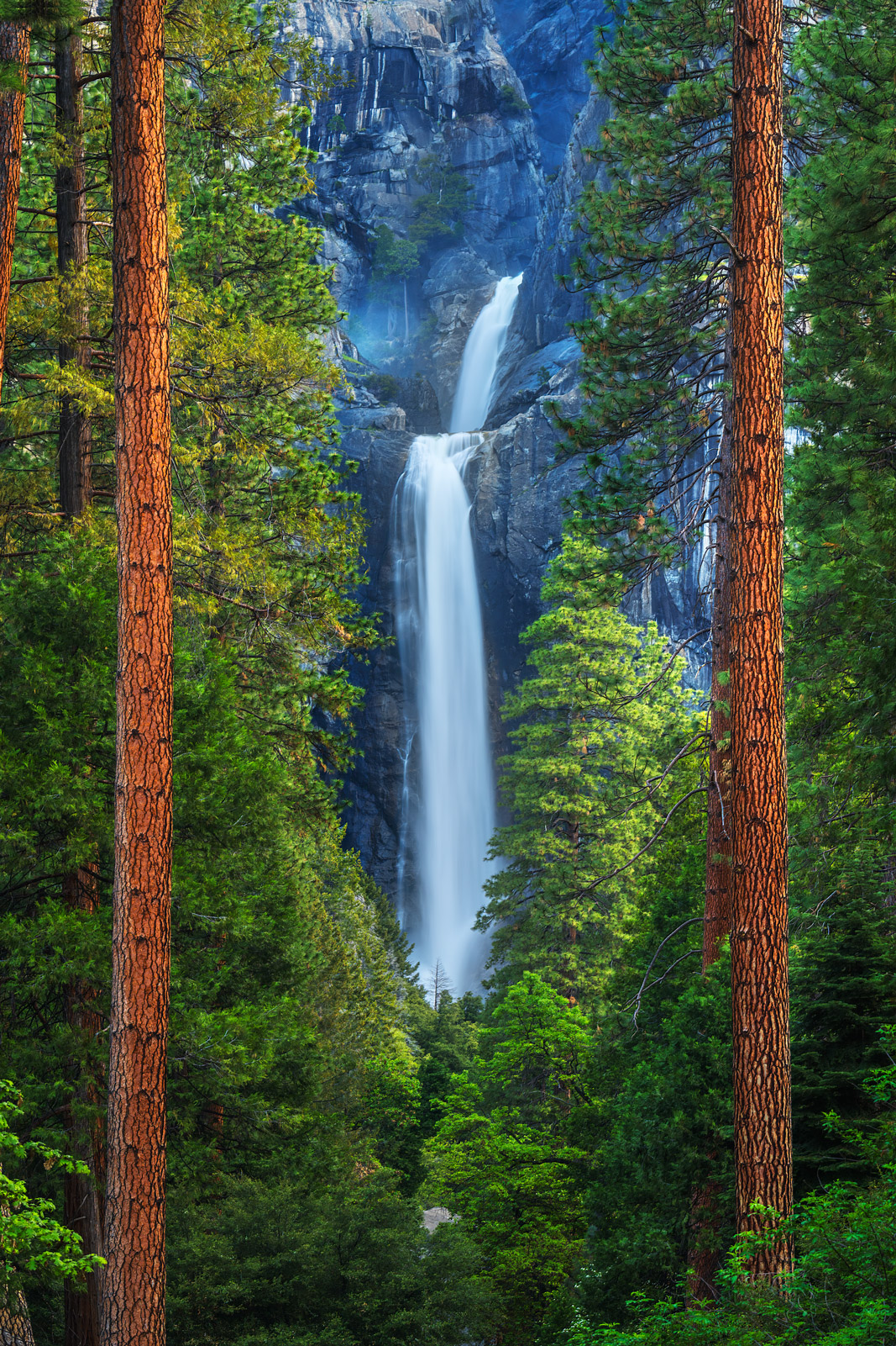 A Limited Edition, Fine Art photograph looking at Yosemite Falls through two parallel Ponderosa Pine Trees at Yosemite National...