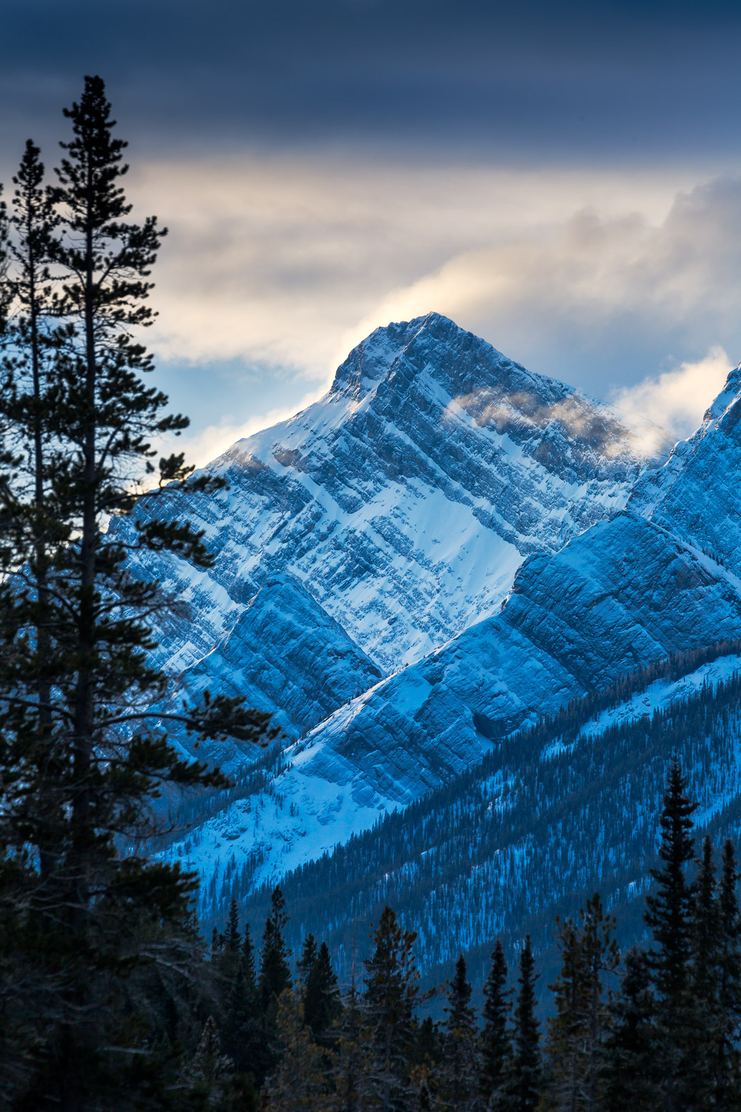 Alberta, Canada, Mountain, Winter, Wind, Snow, Canadian Rockies, Winter Scene, photo
