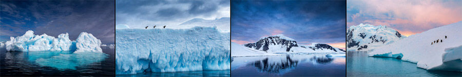 Antarctica Nature and Landscape Photography