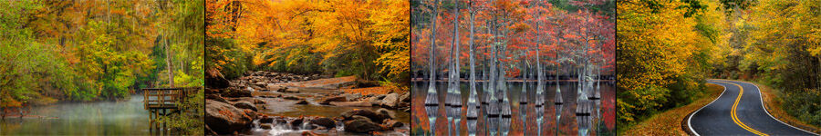 Fall Color Smoky Mountains and New England Landscape Photography