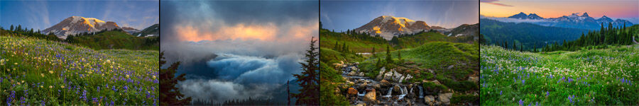 Mount Rainier Landscape Photography
