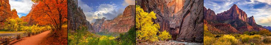 Zion National Park Landscape Photography