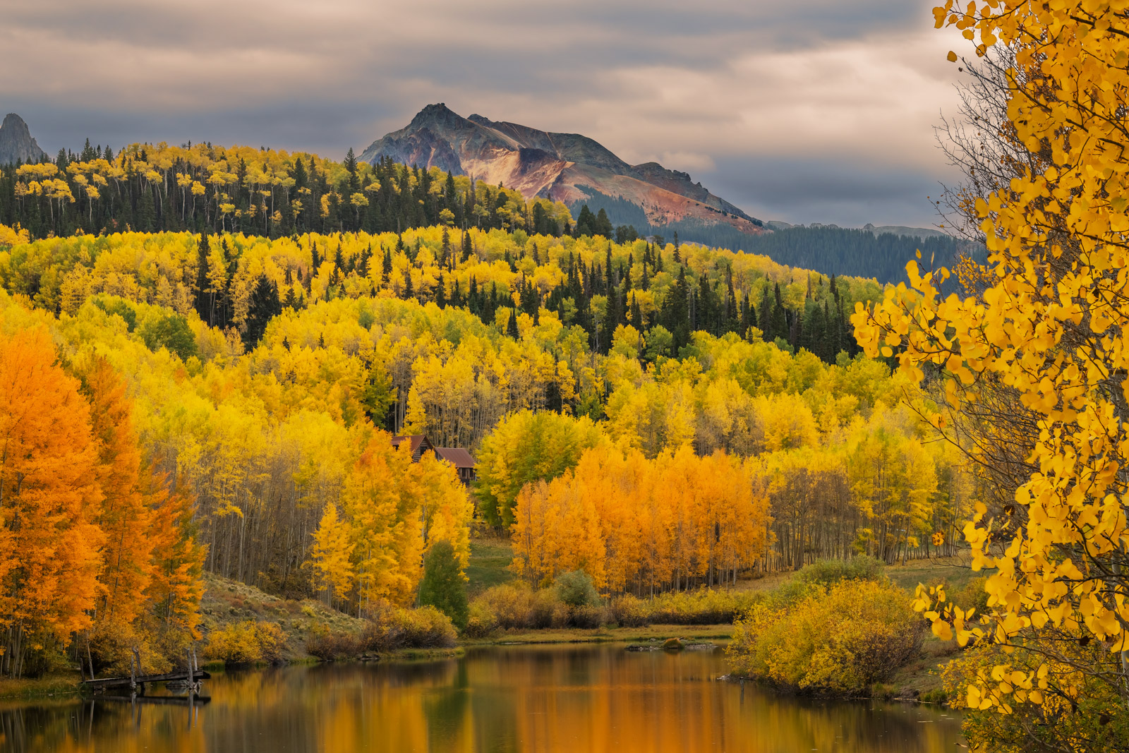Colorado, Telluride, Cushman Lake, Fall, Color, Aspen, Tree,