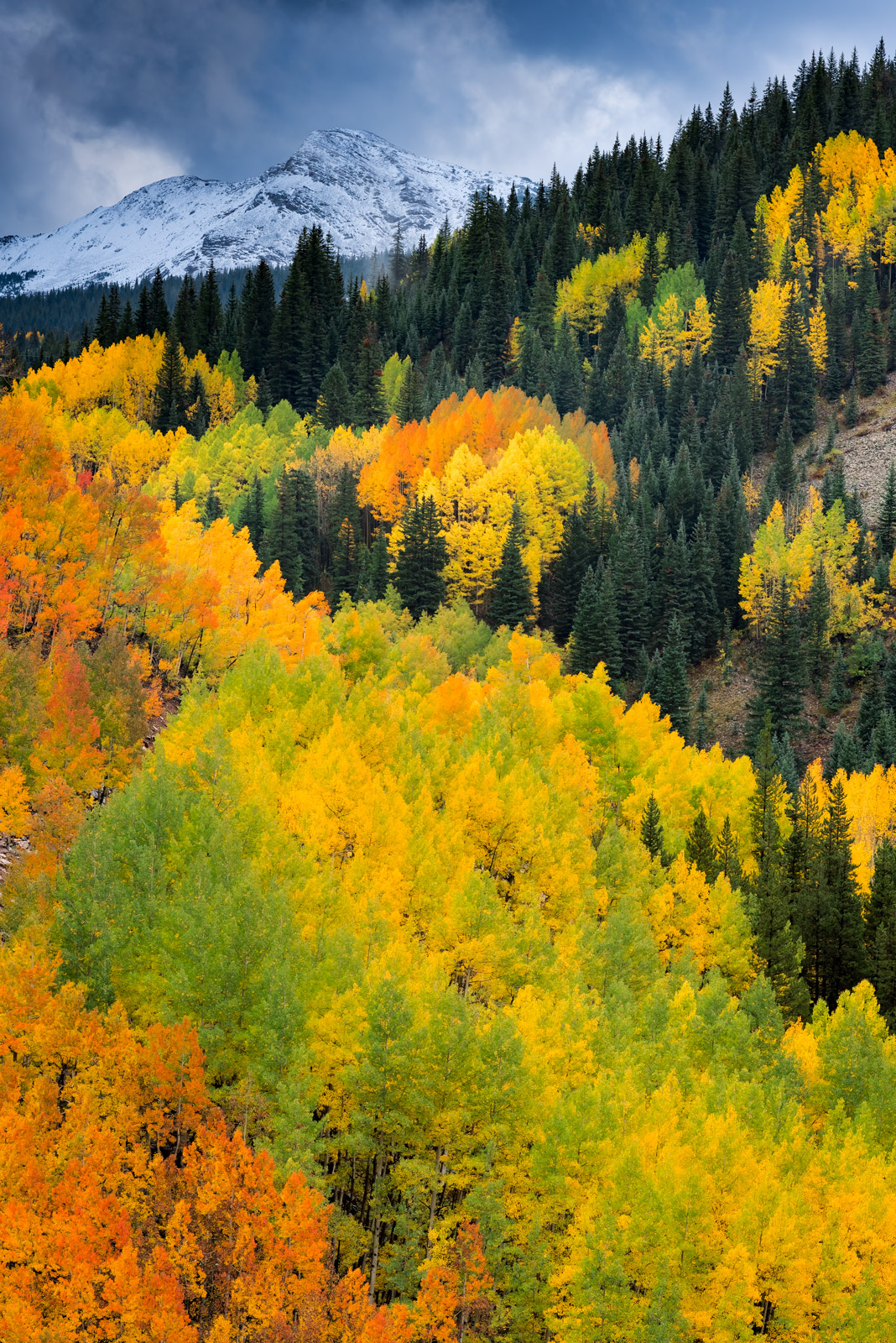 Colorado, Silverton, Mountain, Fall, Color