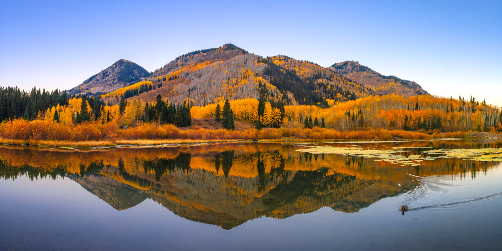A Limited Edition, Fine Art landscape photograph of a reflection in Priest Lake of a mountain and fall color in the San Juan...