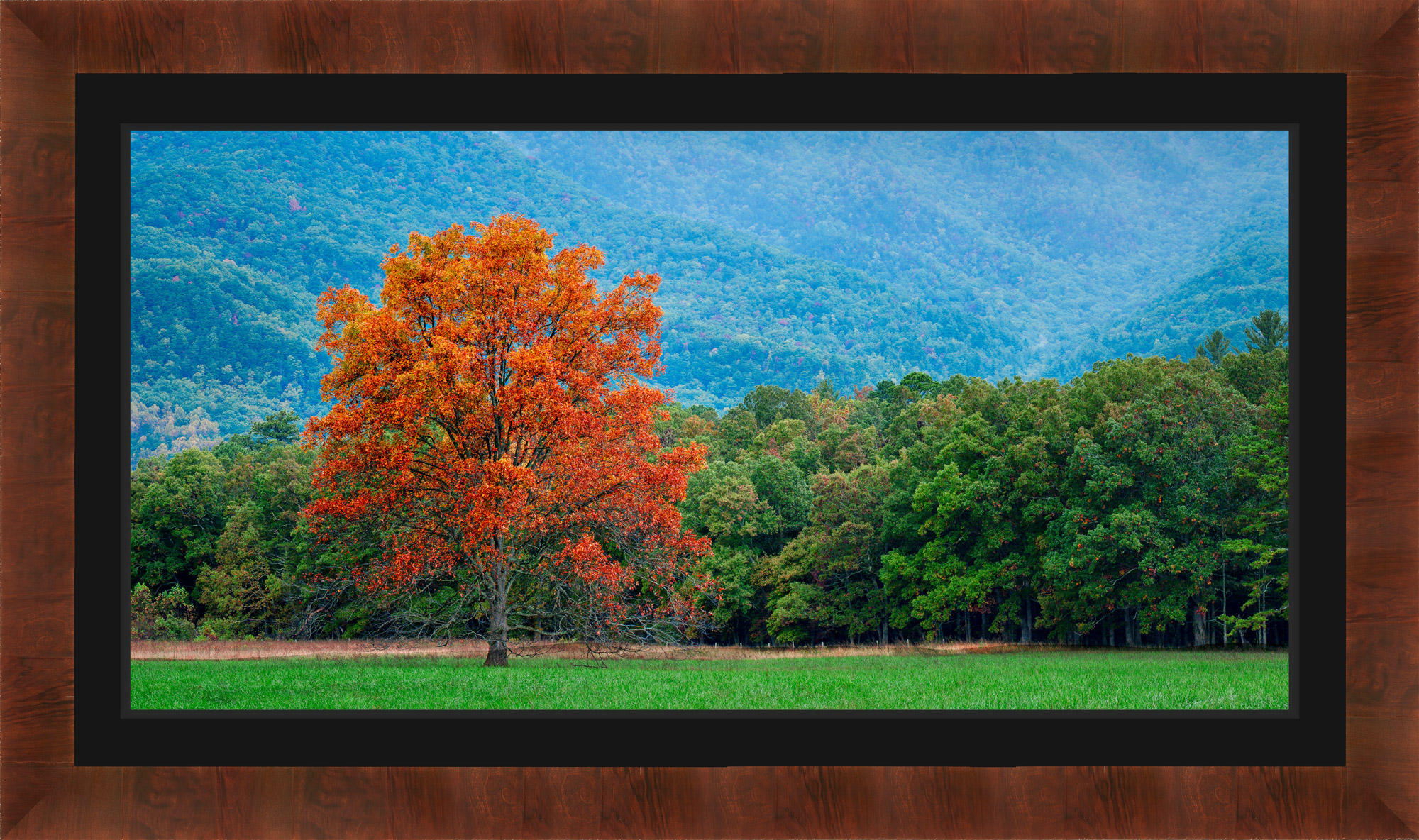 Lumachrome® HD Trulife® Acrylic Framed Print print preview