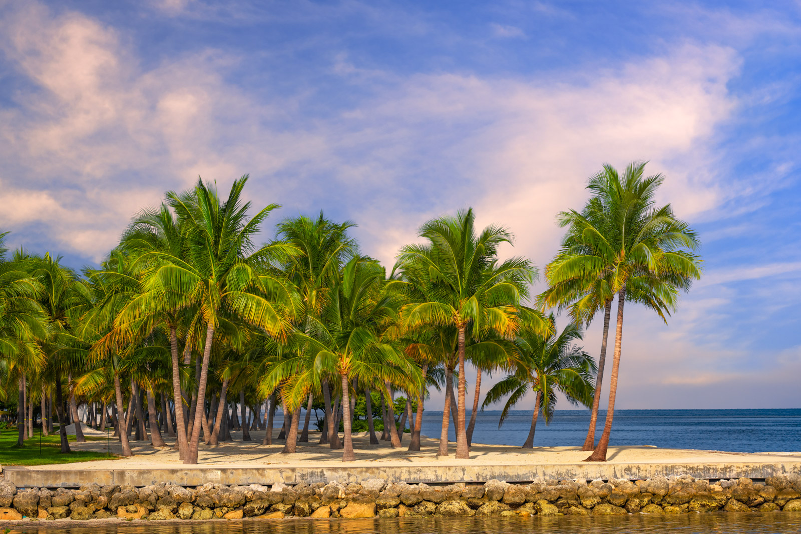 A Limited Edition, Fine Art photograph of palm trees in late day light on the islands of the Florida Keys. Available as a Fine...