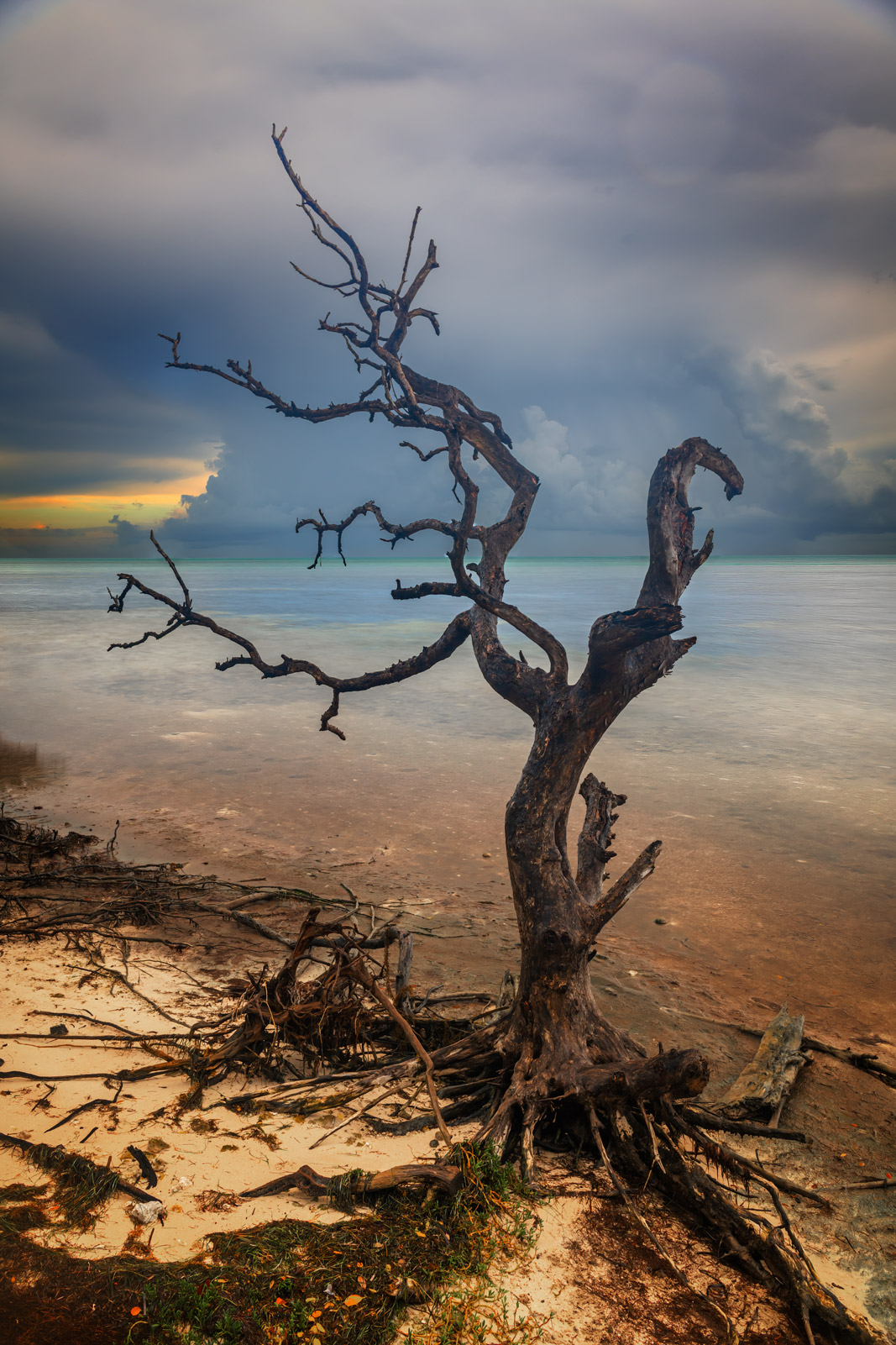 A Limited Edition, Fine Art photograph of a dead tree in the water during a stormy sunrise in the Florida Keys. Available as...